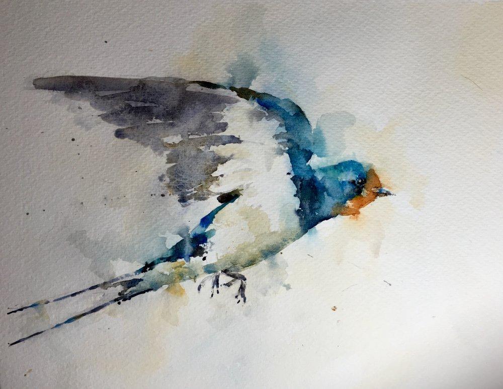 "Barn swallow. Michele Clamp Watercolor 11""x14"""
