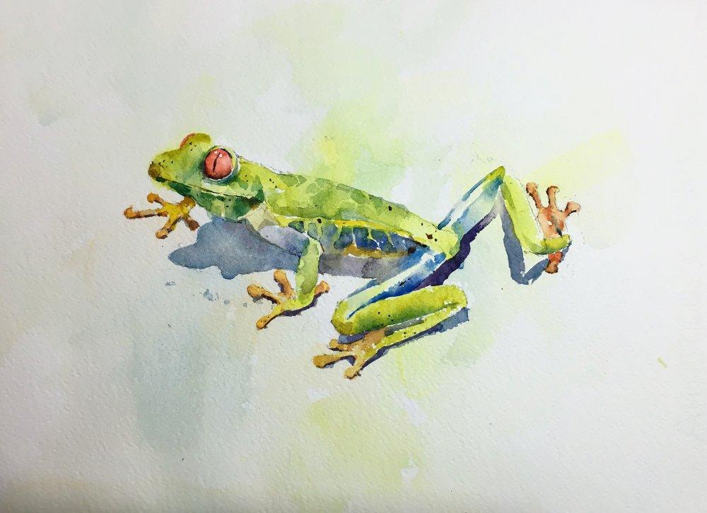 frog_watercolor.JPG