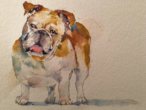 Bulldog Watercolor.jpg