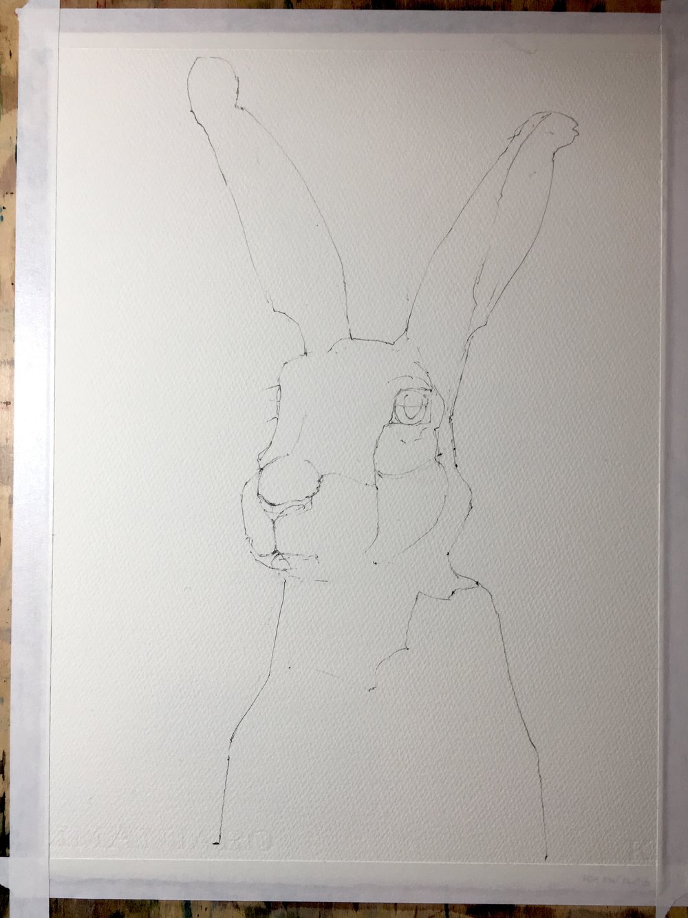 And here's the pencil drawing before going in with the paints.