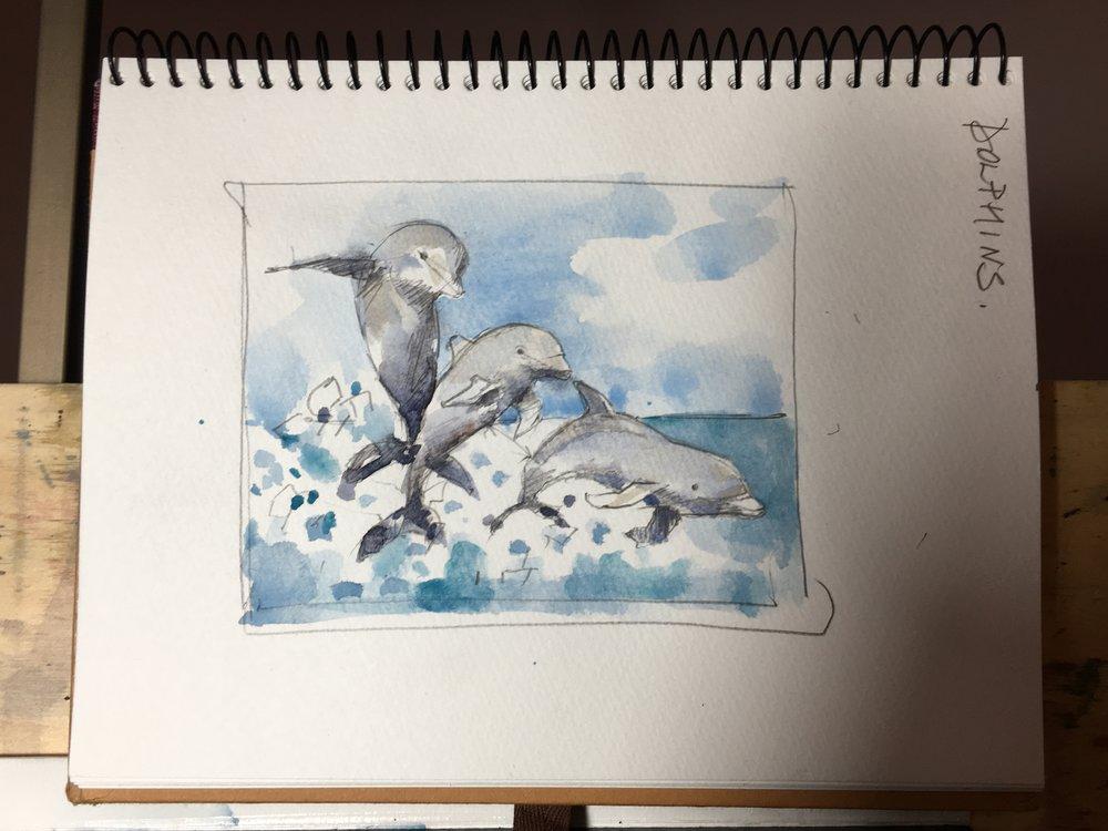 dolphins_sketch.JPG