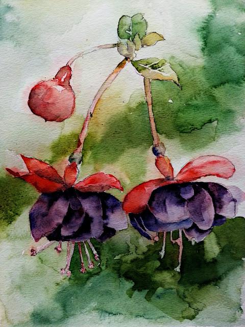 fuschia_watercolor.jpg