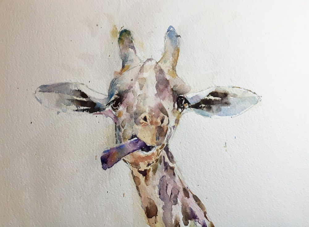 "Cheeky giraffe. Michele Clamp watercolor. 11""x14"""