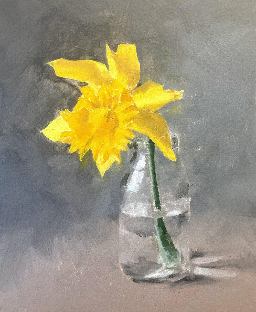 """Daffodil Study.   Michele Clamp.  Oil on paper 10""""x8"""""""