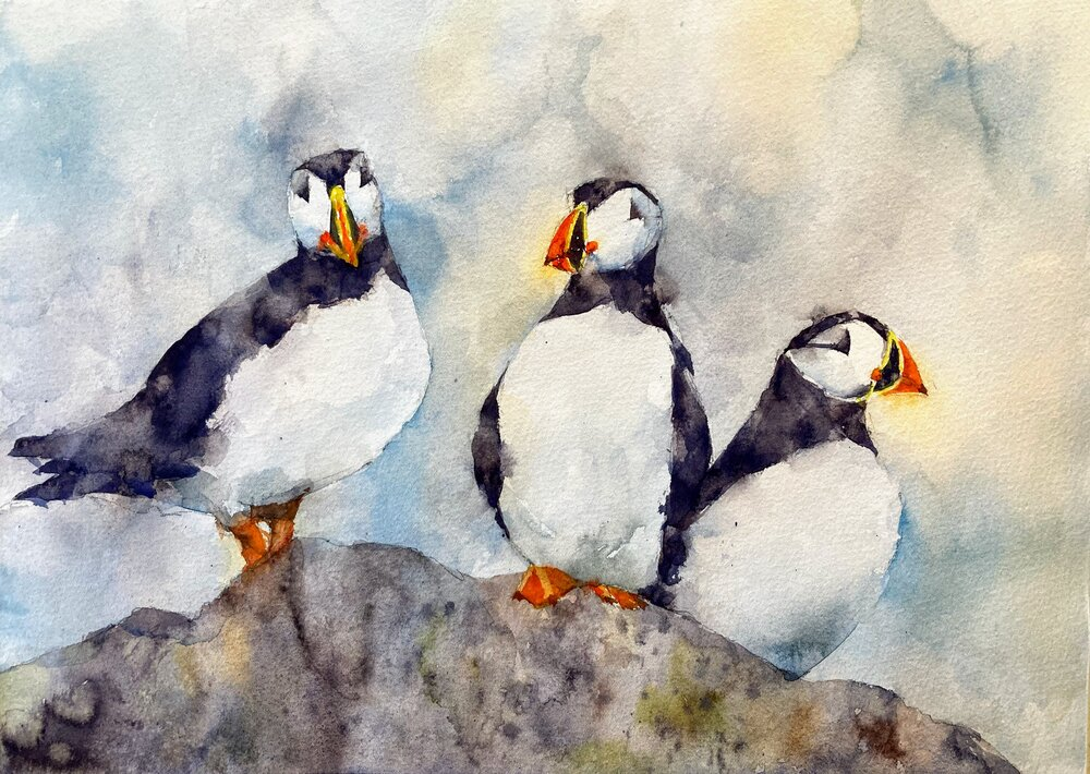puffins_watercolor_painting