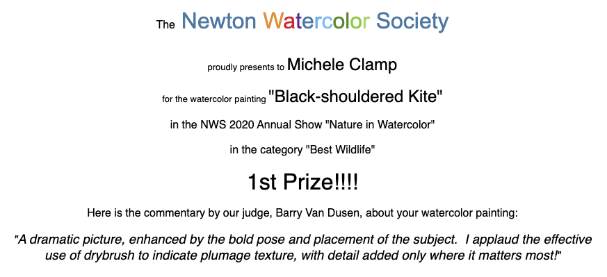 Newton_Watercolor_Society_First_Prize_2020