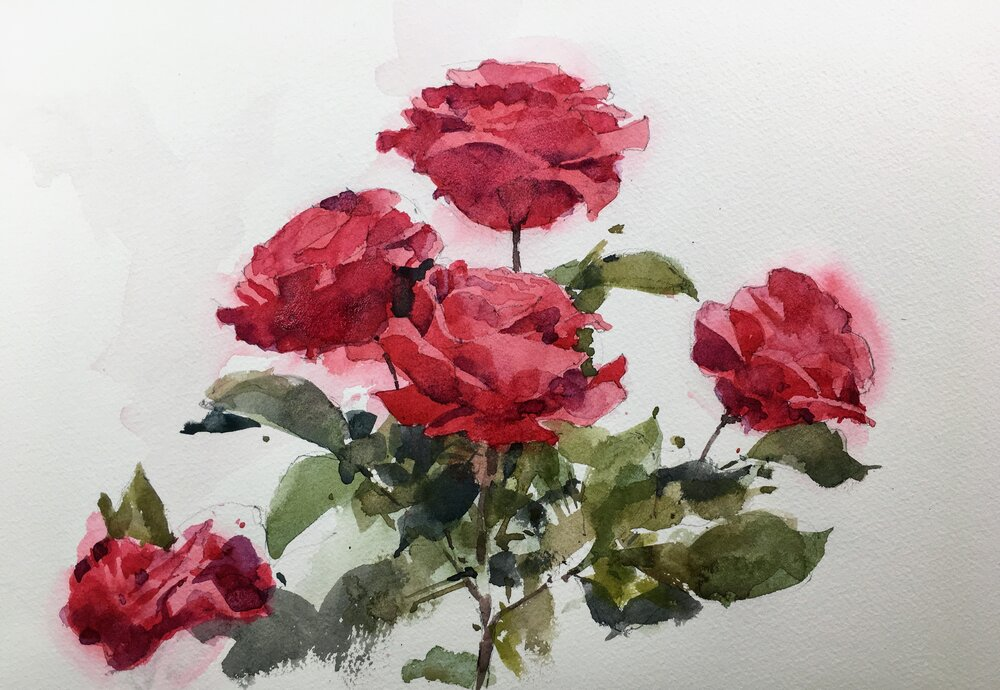 """Roses.  Michele Clamp.  Watercolor 11""""x14"""""""