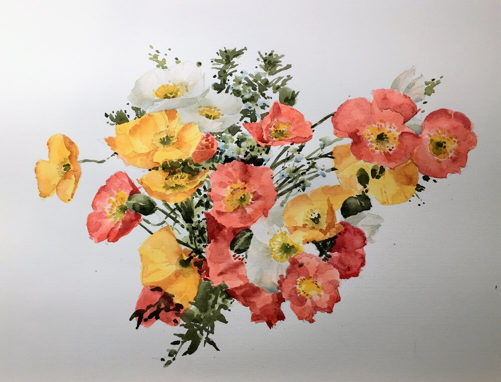 """Poppies.  Michele Clamp.   Watercolor.  11""""x14"""""""