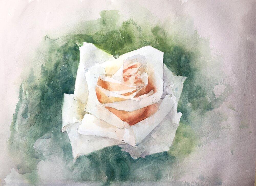 rose_watercolor_painting