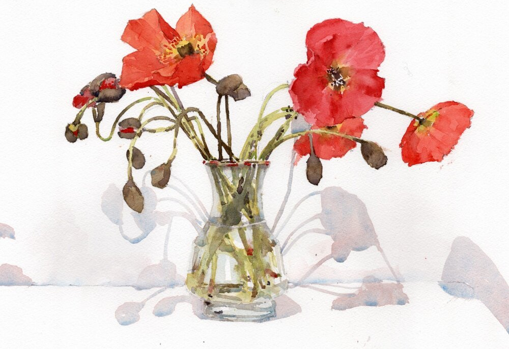 """Poppies. Michele Clamp. Watercolor. 11""""x14"""". For Sale."""