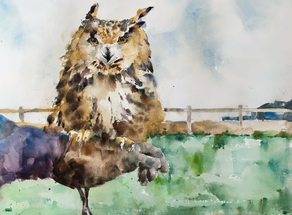 """Owl perching in the wind. Michele Clamp. Watercolor. 11""""x14"""""""