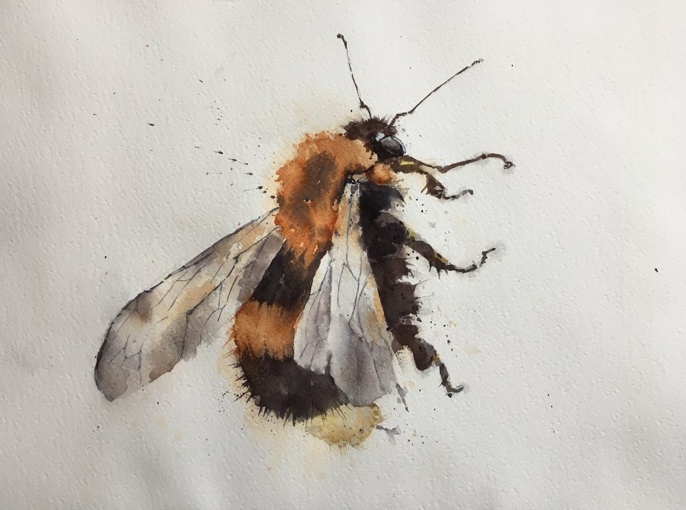 """Bee Too.  Michele Clamp.  Watercolor.  11""""x14"""""""