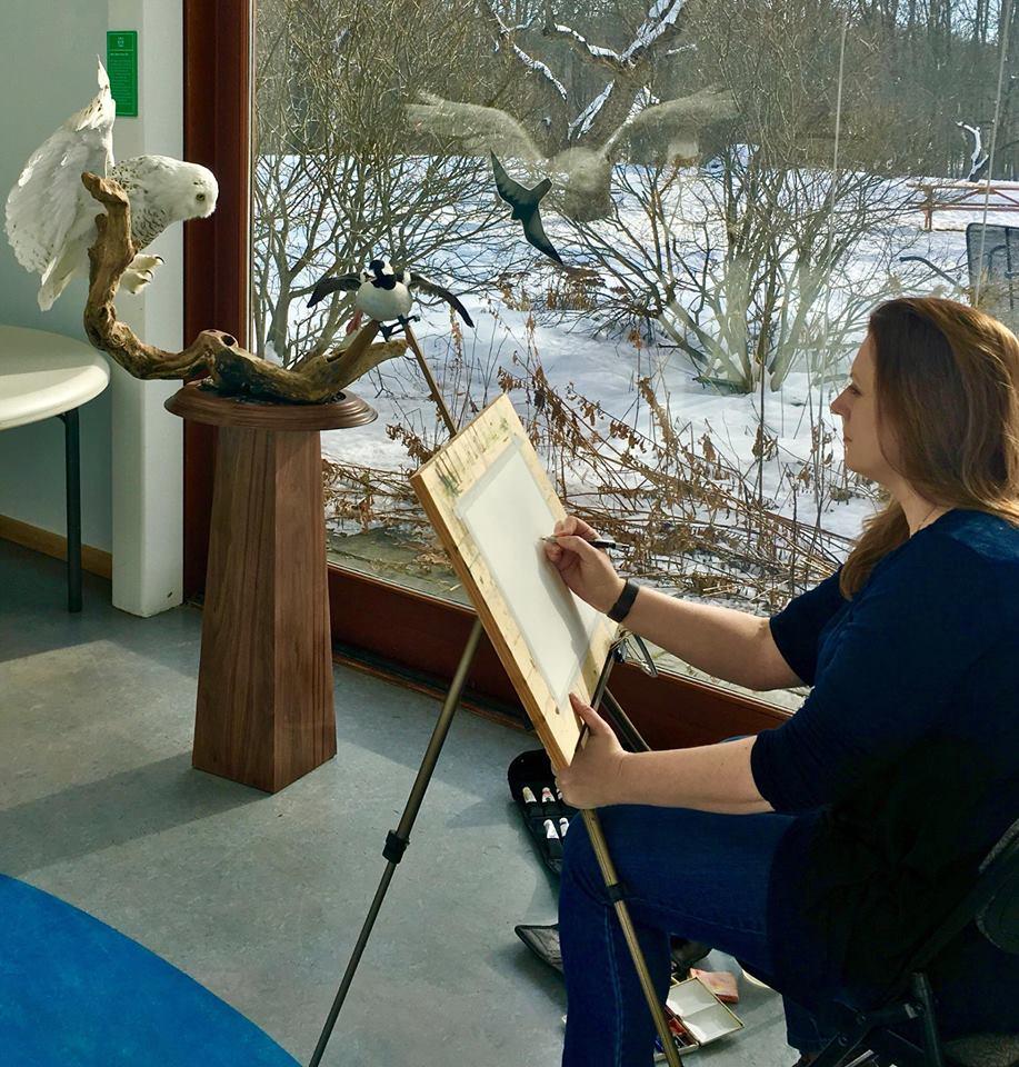 Michele Clamp painting Maine Audubon's snowy owl mount